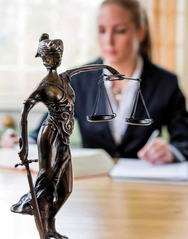 Avocats, Juristes